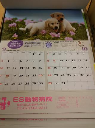 4月に向けて準備中です☆