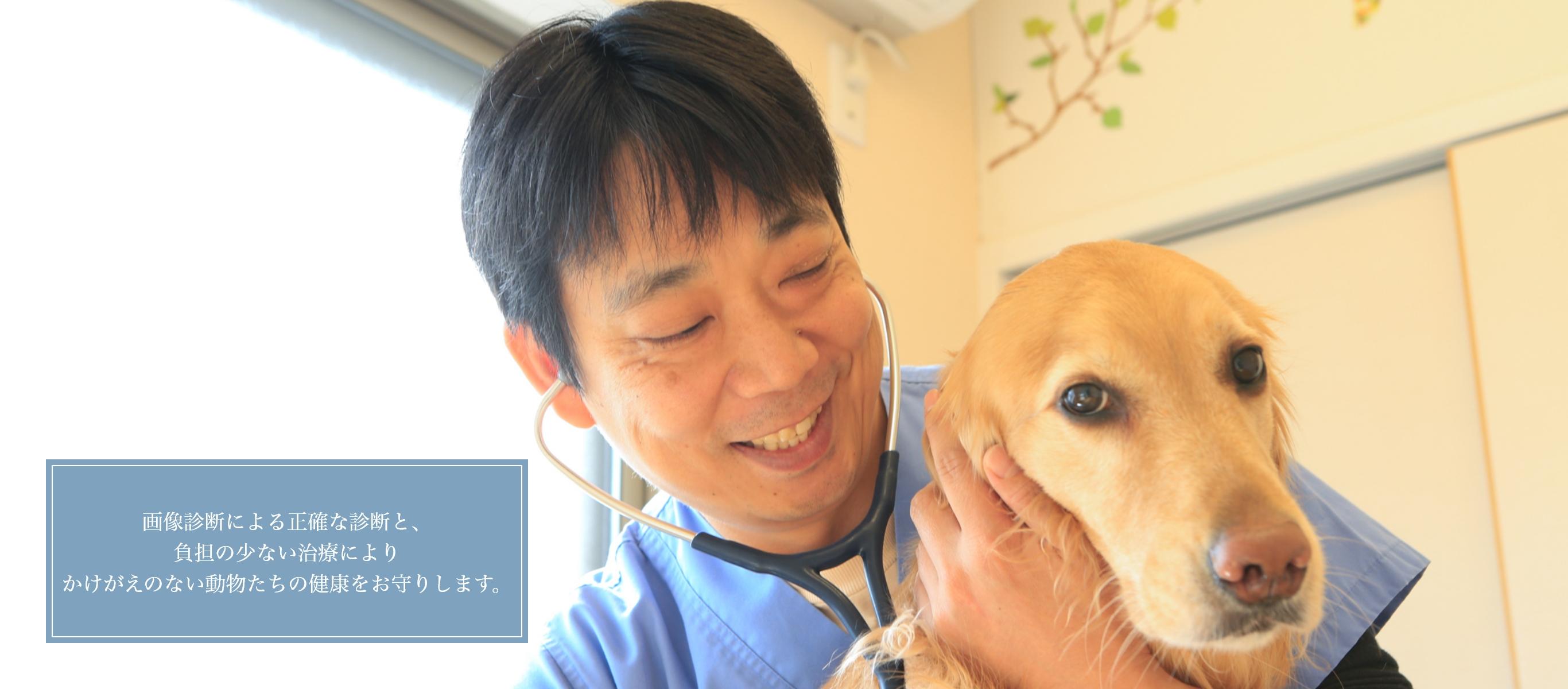 画像診断による正確な診断と、負担の少ない治療によりかけがえのない動物たちの健康をお守りします。